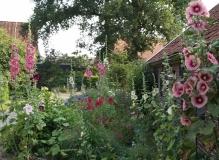 <h5>Cottagegarden </h5><p>Fam. Borgers Eibergen.</p>