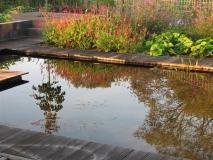 <h5>Vijver, tuin </h5><p>Fam. Roosje Enschede.</p>